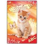 Školské dosky na abecedu mačka