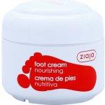 Ziaja Foot Care vyživujúci krém na nohy pre diabetikov (Nourishing) 50 ml