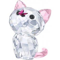 Kohút v mačička pics