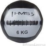 HMS Wall ball 6 kg