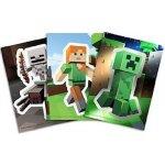 Minecraft karty neuveden