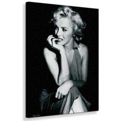 Marilyn Monroe Zasadnutia Obraz Na Plátno Alternatívy Heurekask