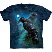 The Mountain Ravens