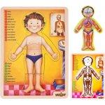 Woody Dřevěné puzzle lidské tělo