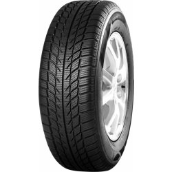 Goodride Snowmaster SW608 205/55 R16 91H