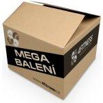 4fitness MSM Methylsulfonylmethan 25 kg