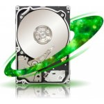 SEAGATE Constellation.2 1TB, ST91000640NS