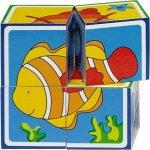 Goki kocky morské zvieratká