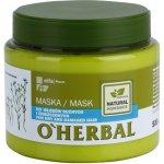 O'Herbal Linum Usitatissimum maska pre suché a poškodené vlasy (Makes Your Hair Silky Soft, Restores Its Shine) 500 ml