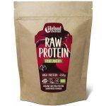 Lifefood Raw ovocný proteín BIO 450 g