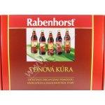 Rabenhorst 5 dňová detoxikačná kúra na očistenie organizmu 5x 750 ml
