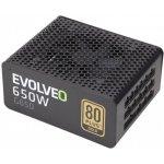 Evolveo 650W E-G650R