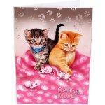 Dosky na abecedu Cats & Mice