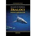 Žraloci, dokonalí vodní predátoři - Alessandro De Maddalena