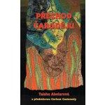 Přechod čarodějů - Taisha Abelarová