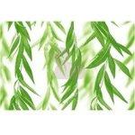 Pilch Dekor Salix A priebežný 30x45 cm - DSALIXA