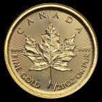 Maple Leaf Zlatá minca Canadian 1/20 oz