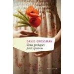 Žena prchající před zprávou - David Grossman