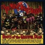 GRATEFUL DEAD.=TRIBUTE=: MUSIC NEVER STOPPED CD