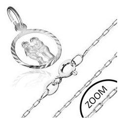 8f9926269 Šperky eshop Strieborná retiazka a prívesok so znamením, BLÍŽENCI AA33.06