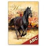 Desky na ABC MFP Kůň 040