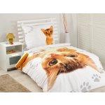 9555b631b Detexpol Obliečky The Cat Abesínska mačka bavlna 140x200 70x80