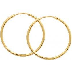 Brilio zlaté náušnice kruhy 231 001 00428 od 122 ac36687dd2c