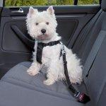 Trixie Postroj pre psa do auta bezpečnostný L