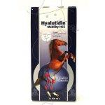 Hyalutidin Mobility HCC 2x500 ml