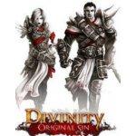 Divinity: Original Sin (Enhanced Edition)