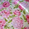 Pivonie Pivonky ružové 10 centimetrov