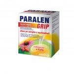 Paralen Grip horúci nápoj echinacea a šípky plo.por.500 mg/10 mg 12 x 500 mg/10 mg