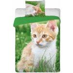 Jerry Fabrics obliečky bavlna Ryšavá mačka 140x200 70x90