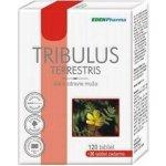 Tribulus Terrestris 120 30tbl
