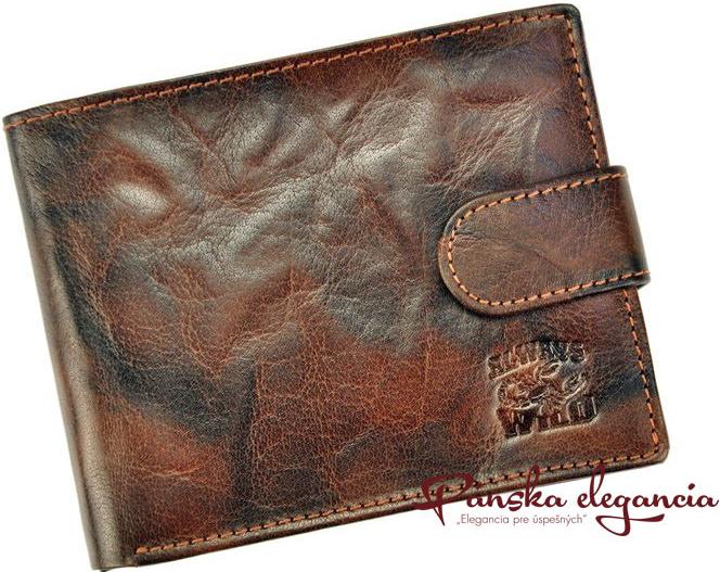 Wild 10702-2 Hnedá kožená pánska peňaženka Always N992L-BC alternatívy -  Heureka.sk a597d919b6c