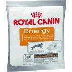 Maškrty pre psov Royal Canin