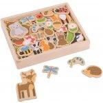 Bigjigs Toys magnetky lesné zvieratká