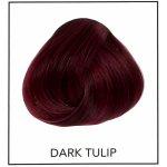 Directions Dark Tulip