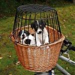 Trixie prepravný kôš na bicykel 44x48x33cm