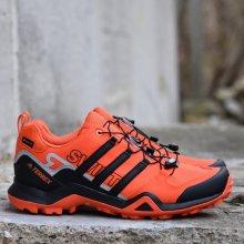 cffb89fdbd4f8 Adidas Performance TERREX SWIFT R2 GTX Pánske topánky BC0384