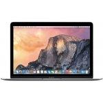 Apple MacBook MJY32SL/A