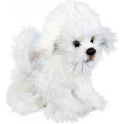 pes Bišon sediaci 26 cm