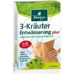 Kneipp 3 bylinky na odvodnění 60 tob.