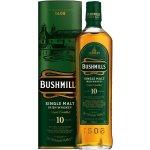 Bushmills 10y 1 l