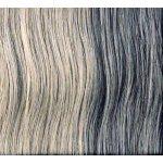 Lisap MAN Color 0.18 Silver Light - strieborná svetlá farba na vlasy pre mužov 60 ml