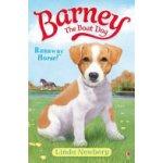 Barney the Boat Dog: Runaway Horse!