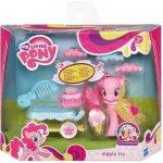Hasbro My Little Pony PONÍK DRUŽICKA