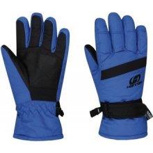 Ledda Detské lyžiarske rukavice modrá e93f6e49c7