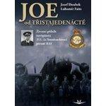 JOE od třistajedenácté - Josef Doubek; Lubomír Faitz