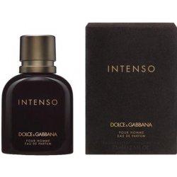396a5a9092264 Dolce   Gabbana Intenso parfumovaná voda pánska 125 ml od 41